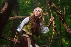 elfów drewna Obraz Royalty Free