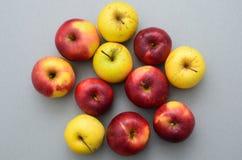 Elf Äpfel auf dem Tisch stockbild