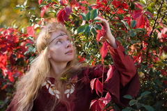 The elf in the autumn forest. The blonde girl in medieval red dress in the autumn forest Stock Image