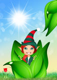 Elf in the bud Royalty Free Stock Photography