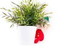 Elf di Santa sta nascondendosi nella cucina fotografie stock