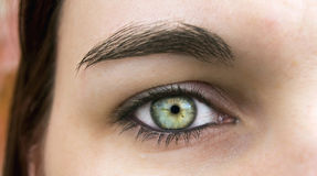 Elf eye. Macro of young woman beautiful green eye Royalty Free Stock Image
