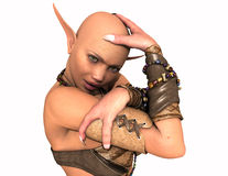 Elf female Royalty Free Stock Images