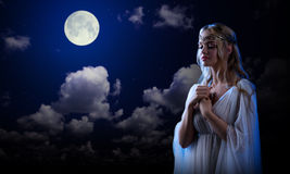 Elf girl on night sky background Royalty Free Stock Image