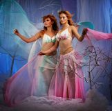 Elf-girls in a forest. Elf in magical winter forest Stock Image