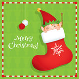 Elf hiding in a boot square. Vector cartoon illustration of a cute elf hiding in a red Christmas stocking. Holiday greeting card with text Merry Christmas. Green Stock Photo