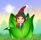 Elf nel germoglio Fotografie Stock