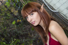 Elf Queen Stock Photography