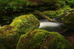 Elf´s landscape stock image