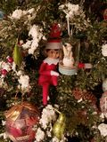 Elf on the shelf in the tree royalty free stock photo