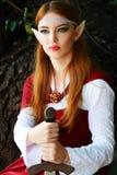 Elf warrior girl stock photo
