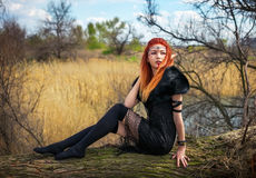 Elf woman with fiery hair on a log. Beautiful young fantasy style girl. Cosplay character stock image