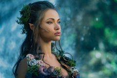 Elf woman in a forest. Elf woman in a magical forest royalty free stock photography