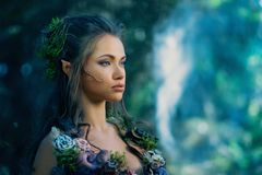Elf woman in a forest. Elf woman in a magical forest Stock Image