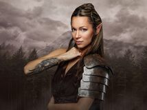 Elf woman with tattoo on her arm. Elf woman with tattoo on her arm over wild forest background royalty free stock photos