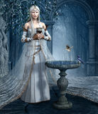 Elfa eliksir Fotografia Royalty Free