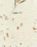 Elfenbein-Maulbeerfaser-Papier Lizenzfreies Stockfoto