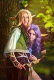 Elfi dal legno Fotografia Stock