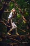 Elfo dal legno Fotografia Stock