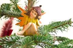 Elfo nell'albero Immagine Stock