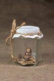 Elfo in un vaso Fotografia Stock Libera da Diritti