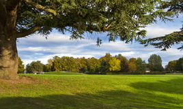 Elgin, парк бондаря в осени. Стоковые Фото