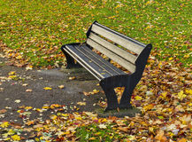 Elgin autumn seat. Stock Images