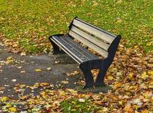Elgin autumn seat. Stock Images