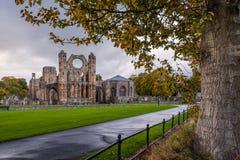 Elgin Cathedral Medieval Ruin Stockfotos