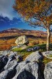 Elgol peninsula Royalty Free Stock Images