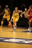 elhotovakaterina för basket tjeckisk spelare Royaltyfri Bild