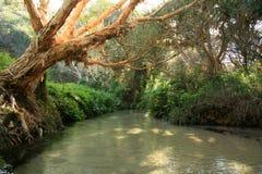 Eli Creek Royalty Free Stock Image