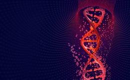 Elica del DNA Ciao tecnologia di tecnologia nel campo di ingegneria genetica illustrazione vettoriale