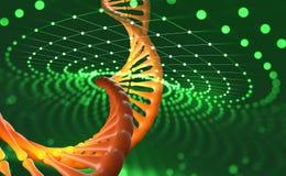 Elica del DNA Tecnologie innovarici nella ricerca del genoma umano Intelligenza artificiale nella medicina del futuro illustrazione vettoriale