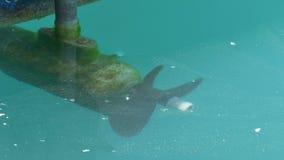 Elica della barca sotto acqua archivi video