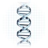 Elica genetica del filo del DNA Immagine Stock Libera da Diritti