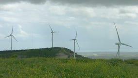 Eliche che filano in vento, mulini a vento del generatore eolico nel bello campo verde stock footage