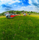 Elicotteri sul campo di estate Fotografia Stock Libera da Diritti
