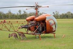 Elicottero con i canguri Fotografia Stock