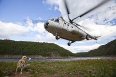 Elicottero di atterraggio Mi8 Immagini Stock