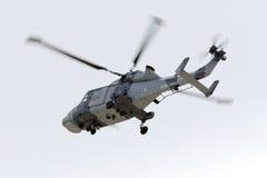 Elicottero selvaggio Fotografie Stock
