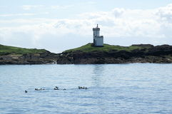 Elie lighthouse, Scotland Royalty Free Stock Images