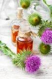 Eliksir leczniczy ziele Fotografia Stock