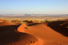 Elim dune near Sesriem Royalty Free Stock Image