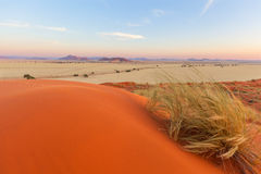 Elim Dunes near Sesriem Stock Image
