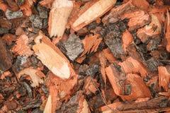 Elimine a casca de árvore imagens de stock royalty free