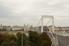 Elisabeth桥梁在布达佩斯(匈牙利) 免版税库存图片