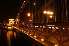 Elisabeth Bridge på natten i Budapest Royaltyfri Bild