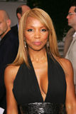 Elise Neal Royalty Free Stock Photography