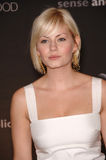 Elisha Cuthbert. Actress ELISHA CUTHBERT at the 13th Annual Premiere Magazine Women in Hollywood gala at the Beverly Hills Hotel. September 20, 2006  Los Angeles Royalty Free Stock Photo